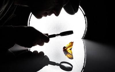 Hiring Hidden Gems: A New Approach to Recruitment